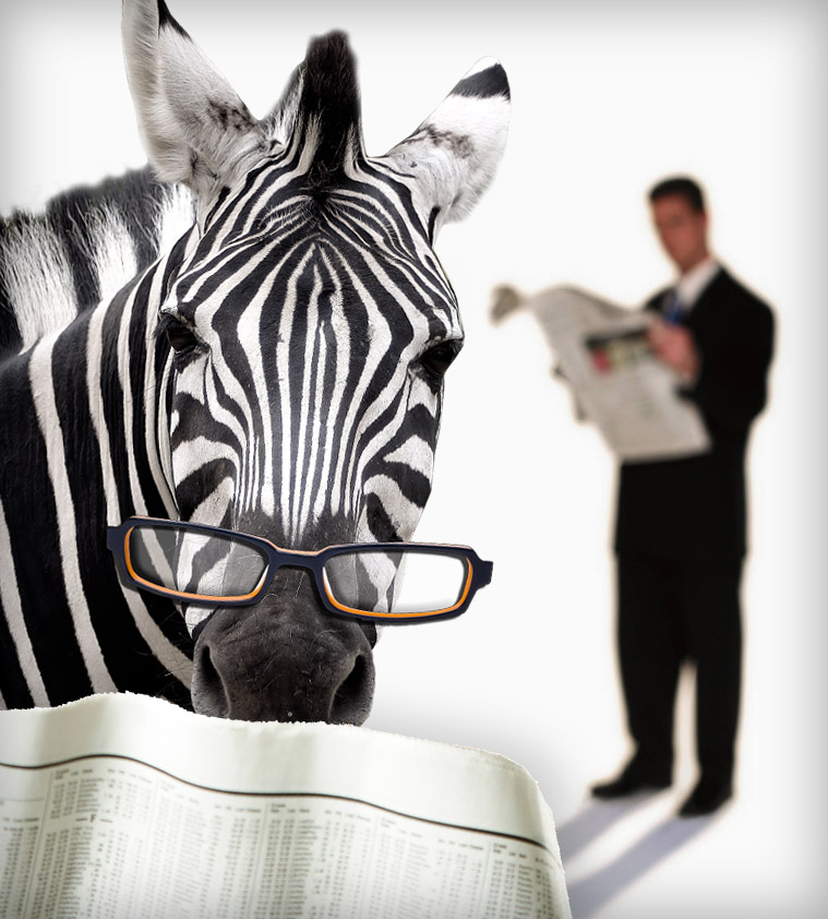 Zebra and man reading newspapers