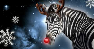 Rudolph Zebra