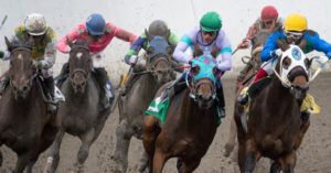 Lessons from the Racetrack